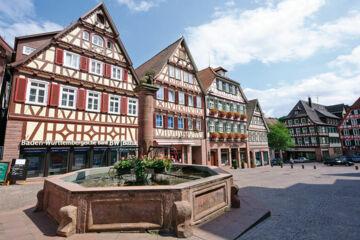 HOTEL-RESTAURANT SCHWARZWALD SONNENHOF Schömberg